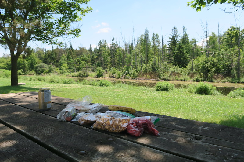 Stopping for lunch at the side of Highway 9 in Ontario
