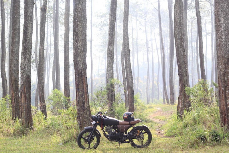 motorcycle forest roads