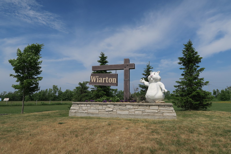 The Wiarton sign in Wiarton Ontario with the large groundhog Wiarton Willie